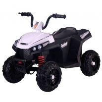 Электромобиль RiverToys T111TT